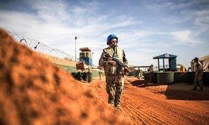 联合国马里稳定团的埃及维和人员为稳定团的物流车队和驻地提供安全保障。