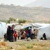 也门境内流离失所的妇女。