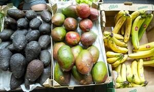 《中国的粮食安全》白皮书指出,中国居民人均直接消费口粮减少,动物性食品、木本食物及蔬菜、瓜果等非粮食食物消费增加,食物更加多样,饮食更加健康。