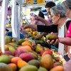 В ФАО объявили 2021-й год Международным годом овощей и фруктов.
