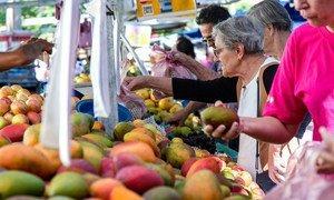 巴西圣保罗的一家市场内,顾客正在挑选芒果等水果。(资料图片)