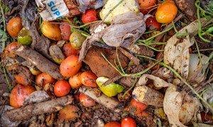 Alimentos desperdiciados en el mercado Lira, en Uganda.