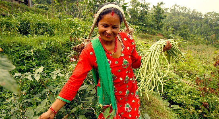 International Day honours rural women's critical role in feeding the world