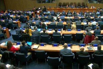 19年11月8日联大第一委员会会议现场。