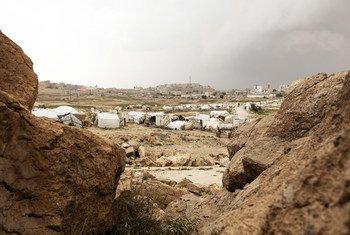 فر الكثير من الناس في اليمن إلى المخيمات هربا من النزاع.