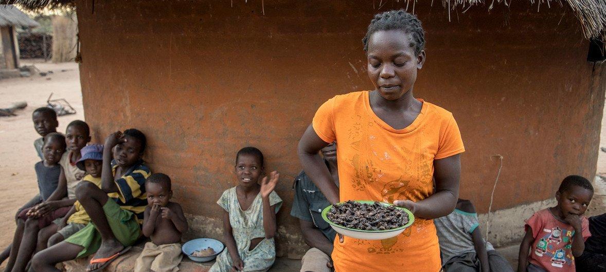 Uma mulher mostra um prato de cigarras em Mazambara, Zimbbábue, uma das opções quando acabam alimentos no PMA.