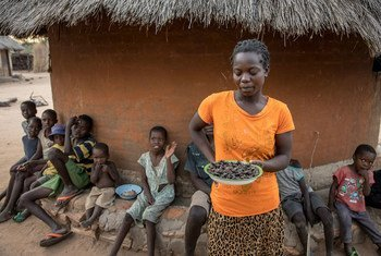In Mazambara, Zimbabwe, where rain has been very sparse, a woman shows a plate of cicadas, one of the food options available after the WFP food ration is over.