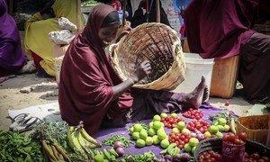 一个更加和平的索马里让索马里人过上更加正常的生活。