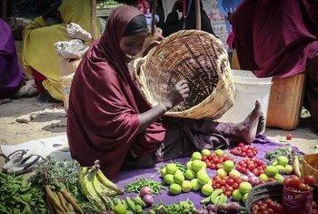 السلام في الصومال يتيح للصوماليين أن يعيشوا حياة طبيعية أكثر.