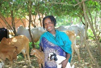 Mnufaika mwingine kutoka West Guji, akishikilia mbuzi aliowanunua akitumia msaada w apesa taslim. Picha: IOM Ethiopia
