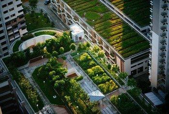 Les villes durables aident à lutter contre le changement climatique.