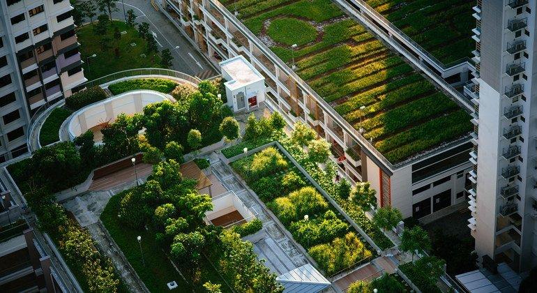 Cidades sustentáveis ajudam na batalha contra as mudanças climáticas