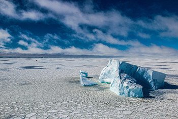 Icebergs in the Bellingshausen Sea in Antarctica.