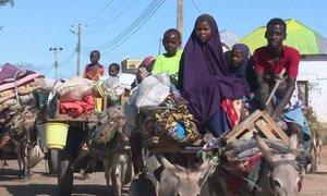 نزح حوالي نصف مليون شخص، كما تضرر أكثر من مليون شخص من الفيضانات والسيول النهرية في الصومال. بيليت وين، إحدى أكثر المناطق تضررا حيث تعرضت لأول مرة لفيضانات شديدة في أواخر العام الماضي عند فيضان نهر شابيلي بسبب الأمطار الغزيرة.