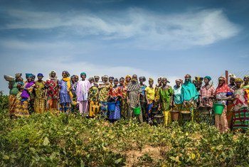 Mali has partnered with UNDP to strengthen agricultural communities and empower women to mitigate the social and economic consequences of climate change.
