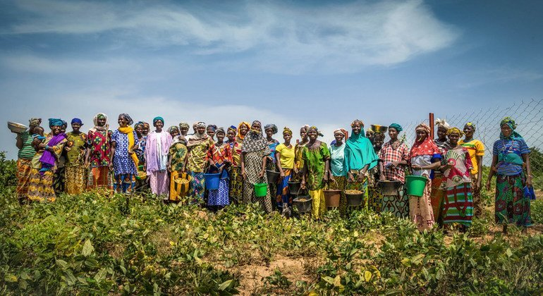 FROM THE FIELD: Green wall of opportunities grows in the Sahel