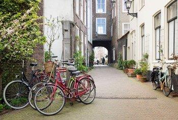 荷兰海牙街景。