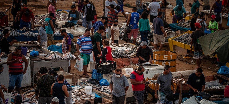 Movimento intenso em um mercado informal de peixes às margens do Rio Negro, em Manaus, em setembro de 2020