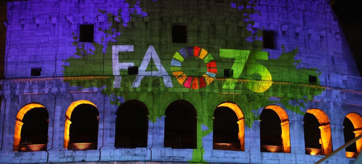 The 75th anniversary of the founding of the Food and Agriculture Organization is celebrated in a digital projection on Rome's Colosseum. ©️FAO/Alessia Pierdomenico