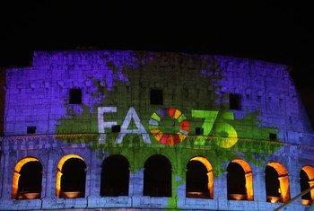 罗马圆形大剧场的数字投影,庆祝联合国粮农组织成立75周年。