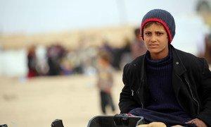 """يقول صبي يبلغ من العمر 12 عاما فرّ إلى مخيم الهول في شمال شرق سوريا: """"الجو بارد جدًا هنا، وفي الليل الرياح قوية جدا وباردة لدرجة أن البطانيات لا تكفي للشعور بالدفء""""."""