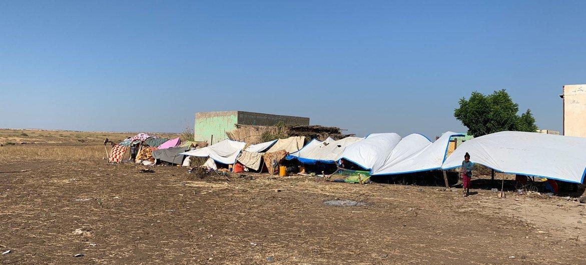Abrigos temporários foram construídos no Sudão por refugiados que fugiam de confrontos na região de Tigray, no norte da Etiópia.