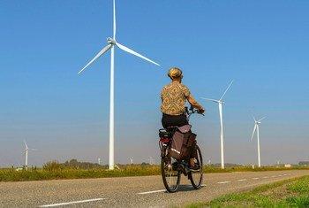 Turbinas eólicas em uma estrada em Heijningen, na Holanda