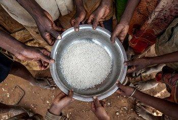 Drought-stricken Madagascar has been identified as a 'hunger hotspot'.