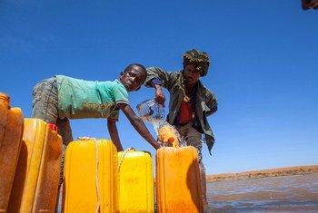 Desde novembro, dezenas de milhares de pessoas foram forçadas a deixar suas casas devido à extrema escassez de água na Somália