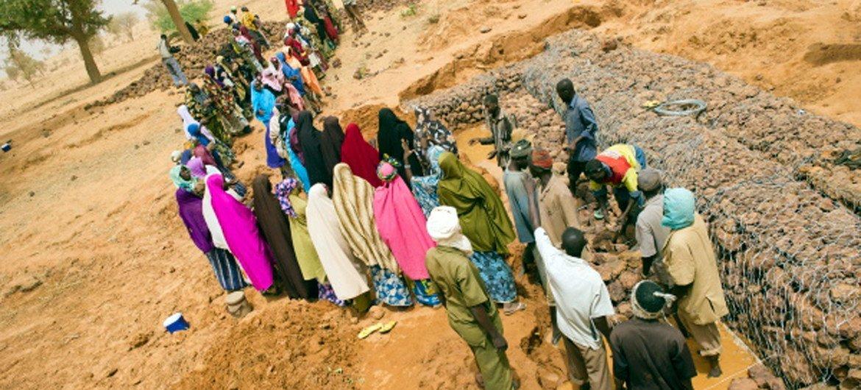يوفر مشروع برنامج الأغذية العالمي لبناء سد في النيجر دخلا للسكان المحليين ويعزز القدرة على الصمود في وجه حالات الجفاف في المستقبل.