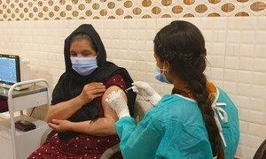 巴基斯坦的一名阿富汗难民正在接种新冠疫苗。