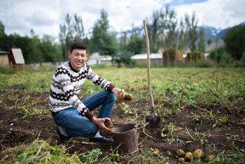По данным Бюро МОТ для стран Восточной Европы и Центральной Азии, в некоторых странах региона до 60 процентов трудящихся заняты в неформальном секторе