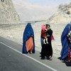 В Афганистане надеются, что следующий год принесет стране мир. На фото: жительницы Афганистана.