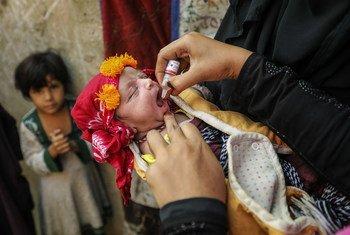 Этому пакистанскому малышу всего 13 недель, а он уже получает прививку от полиомиелита. Пакистан вместе с соседним Афганистаном - единственные страны, где полиомиелит еще не побежден.