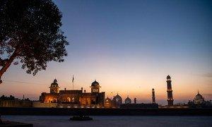 世界旅游组织表示,全球217个旅游目的地100%对国际游客实施旅行禁令。