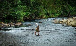 سيّدة تعبر نهرا في جامبي بإندونيسيا.