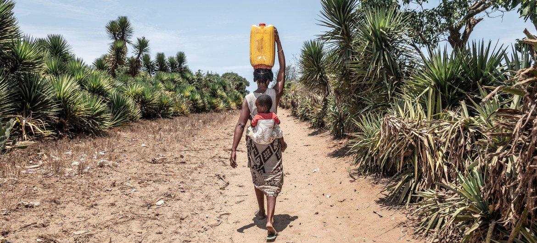 سيّدة في مدغشقر تسير 14 كيلومترا في اليوم للبحث عن مياه نظيفة.