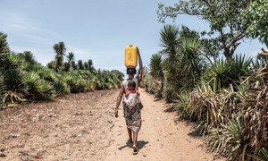 Une femme à Madagascar marche jusqu'à 14 km par jour pour trouver de l'eau potable.