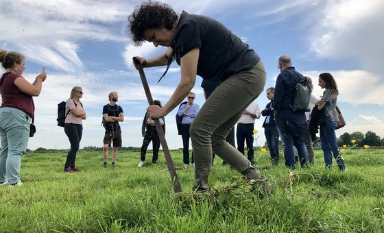 Farmer Monique van der Laan from farm De Beekhoeve in Kamerik, the Netherlands uses her shovel in the peat meadows, while surrounded by visitors