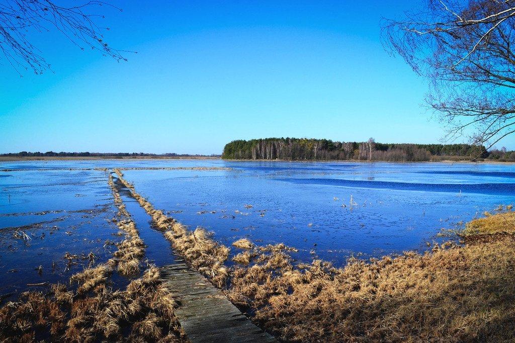 在白俄罗斯,泥煤沼泽重新得到合理利用,成为天然有效的二氧化碳吸收池。