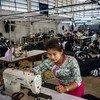Trabajadora migrante en una fábrica de ropa en Tailandia. Su jornada laboral es de doce horas y no gana siquiera el salario mínimo diario.