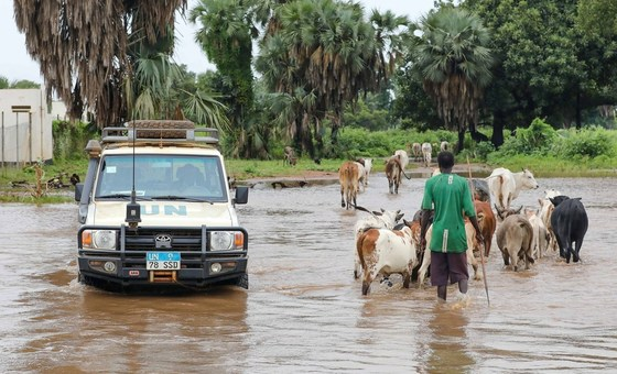 As Nações Unidas pedem apoio internacional urgente para vítimas de inundações no Sudão do Sul.