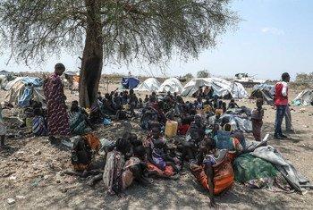 La violence intercommunautaire a affecté les populations à Pibor, dans l'est du Soudan du Sud.