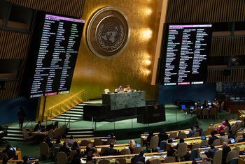 Генеральная Ассамблея приняла 69 резолюций Третьего комитета