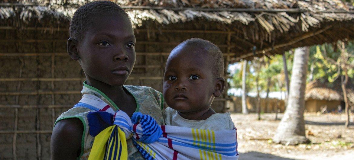 世界粮食计划署正在努力为达莫桑比克卡波德尔加多面临粮食危机的流离失所者提供援助。