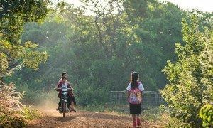 柬埔寨东北部的拉达那基里省,一名11岁的女孩正走在上学路上。她上的学校提供多语言课程教学,使得她能够一边学习柬埔寨语,一边用自己的母语克伦语(Kreung)上课。