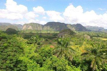 El proyecto respaldado por el PNUD en Cuba lleva a cabo una valoración económica de los bienes y servicios de los ecosistemas producidos por los bosques, que servirán para fundamentar las decisiones financieras y de desarrollo.