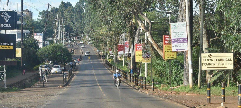Já no Quênia um tipo de árvores conhecido como Mesquita, cultivada para combater a desertificação, se espalhou de forma tão agressiva que aniquilou a vegetação nativa.