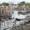 Na América Latina entre 30% e 40% das águas residuais são devolvidas ao meio ambiente sem tratamento adequado.