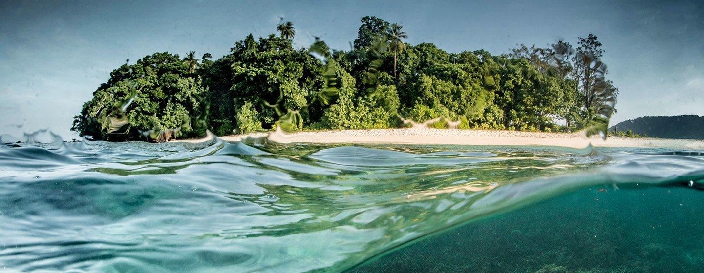 Una barrera de coral en Papua Nueva Guinea.